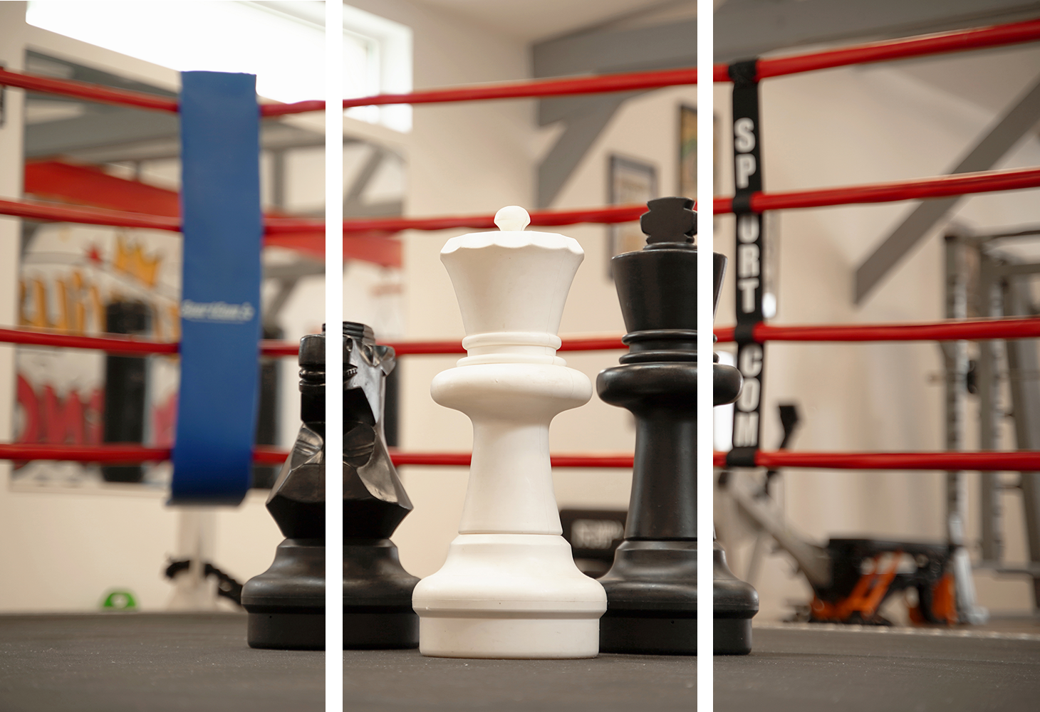 One week to become a chessboxer