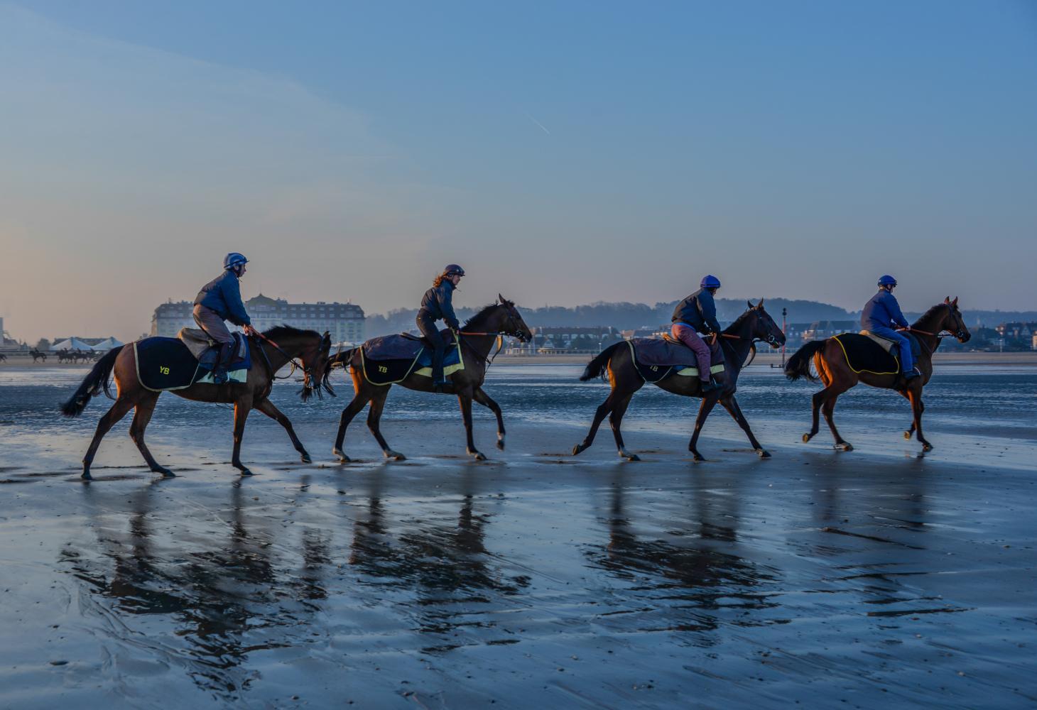 horse_beach_beatrice_augier_1460x1000