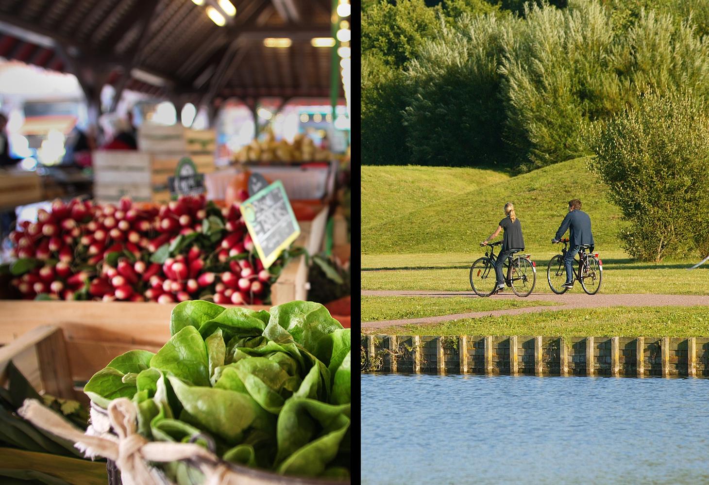 Markt und Radtour
