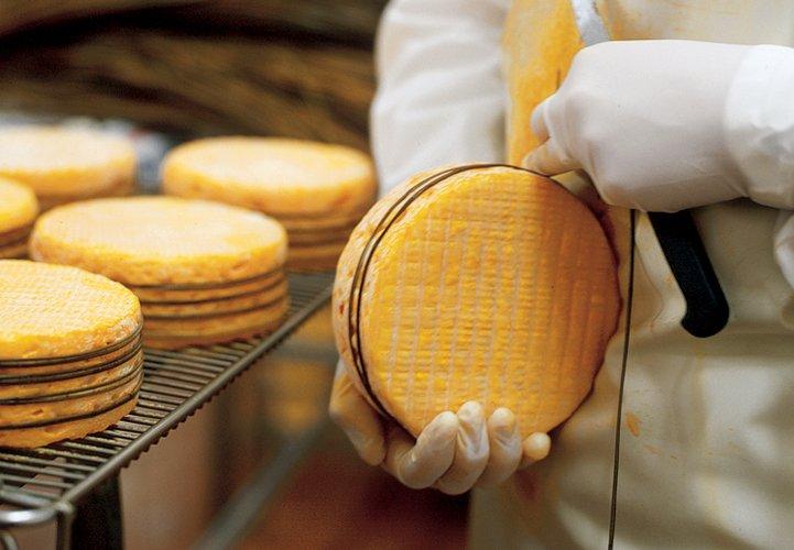 Graindorge cheese factory in Livarot