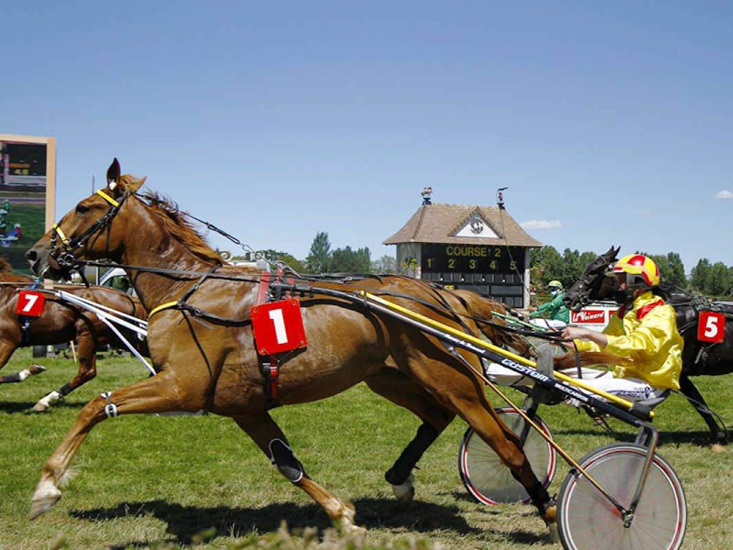 meeting_de_clairefontaine_trot_800x600.jpg